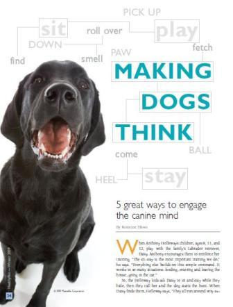 making dogs think graphic
